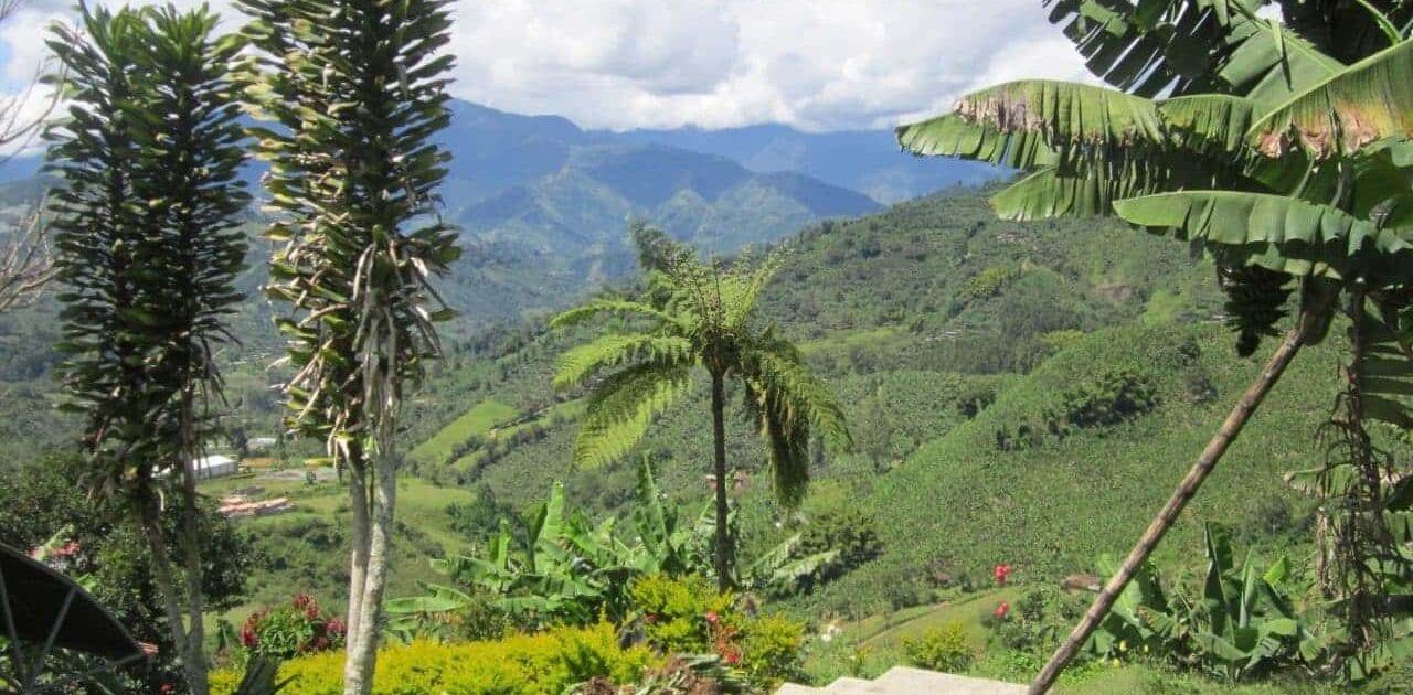 COFFEE TOUR OF JARDIN, COLUMBIA